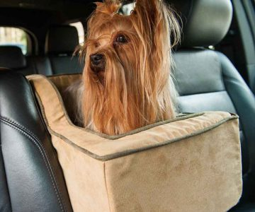 Luxury High-Back Pet Car Seat