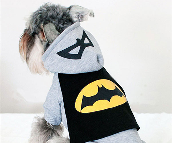 Batman Dog Hoodie
