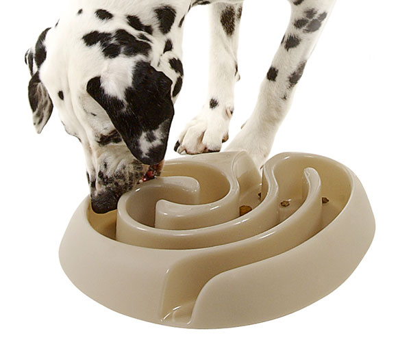 Dog Maze Food Bowl