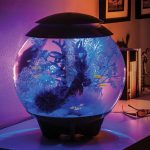 biOrb HALO illuminated Aquarium