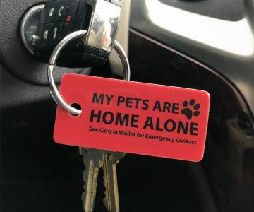 Cool Things To Buy - Emergency Pet Key Tags